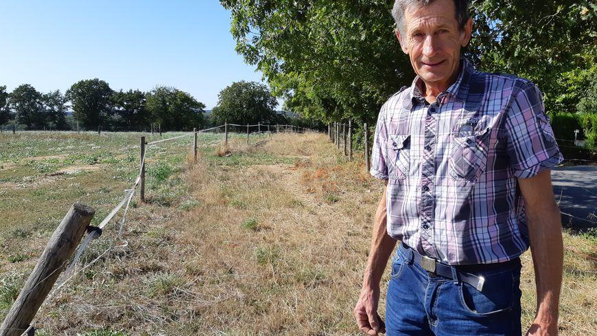 Christophe Piquet veut planter des bambous sur une surface de deux hectares à Azé.