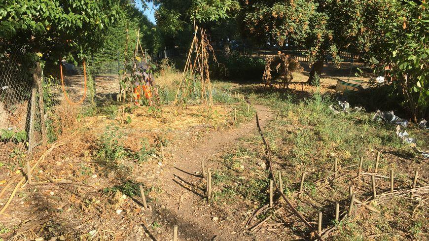 Le jardin pédagogique de l'école des Planches à St Maur est cultivé en Bio