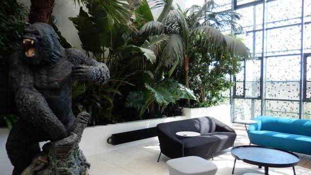 Le jardin d'hiver dans les nouveaux locaux d'Ubisoft Montpellier