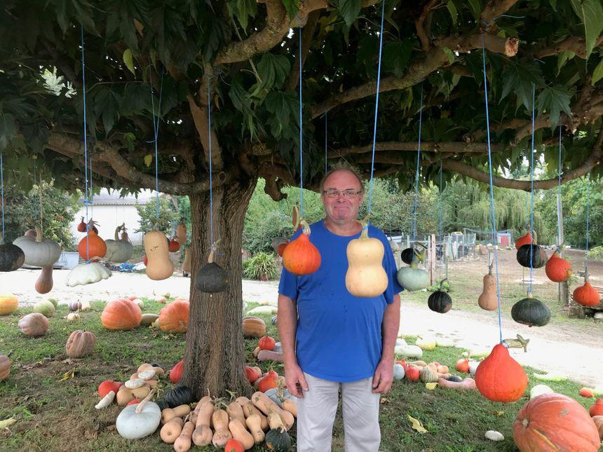 Alain Fritsch devant son arbre à courges