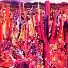 """Pochette de l'album """"Recounting the ballads of thin line men"""" par Giant Sand"""