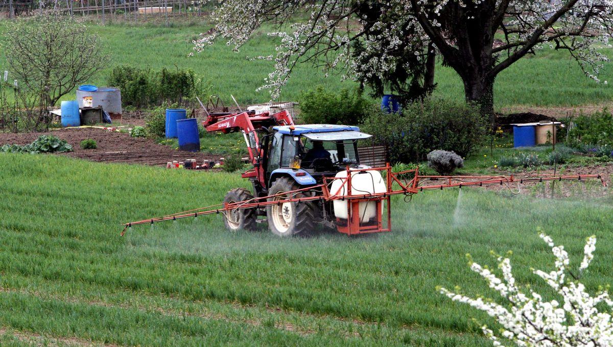Tenir les maisons à distance des pesticides : le décret fait débat en Lorraine
