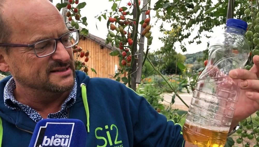 VIDÉO - En Haute-Savoie, un jardinier fertilise ses tomates avec de l'urine