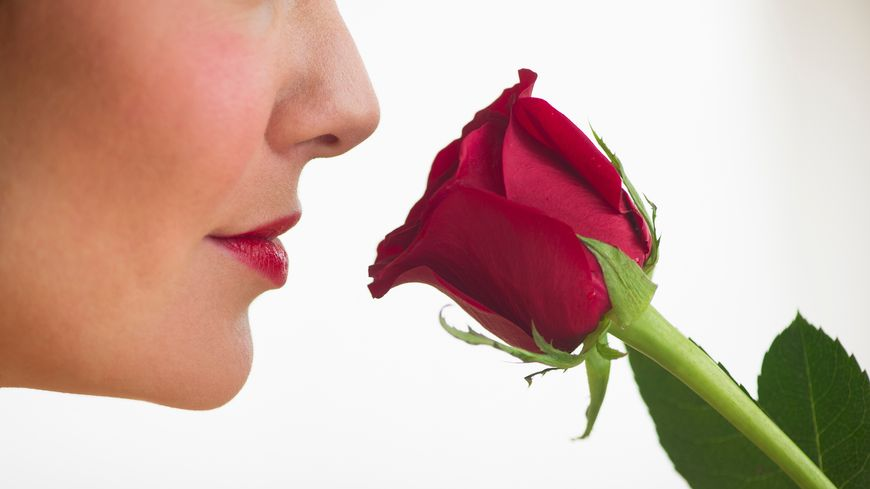 Humer une rose rouge...