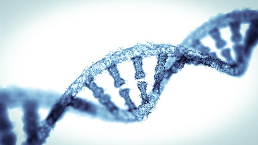 De l'ADN en double hélice.