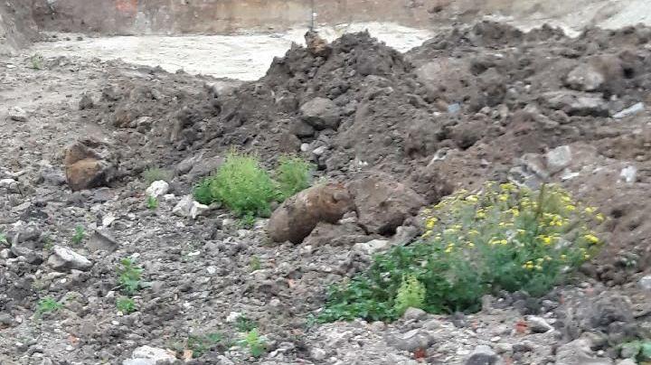 La bombe en question, le 26 septembre 2019, sur le chantier de l'ancienne prison d'Orléans