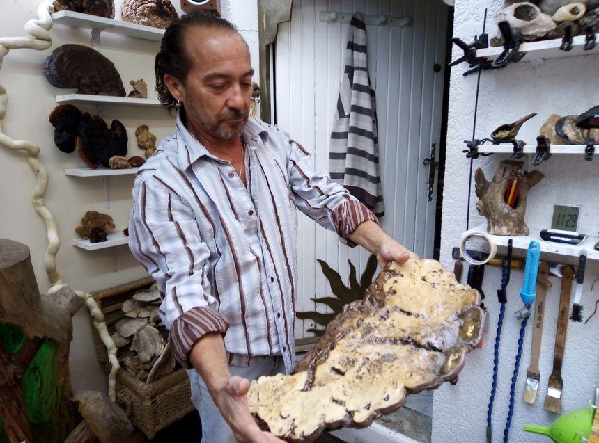 Pascal Double façonne également des champignons d'amadou.