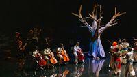 Dix mois d'école et d'opéra  : un premier pas vers l'art lyrique