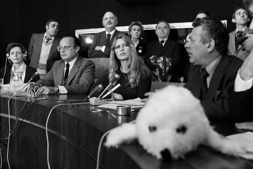 Brigitte Bardot au Conseil européen pour dénoncer la chasse aux phoques,  le 24 janvier 1978