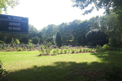 Cimetière écolo à Ivry-sur-Seine
