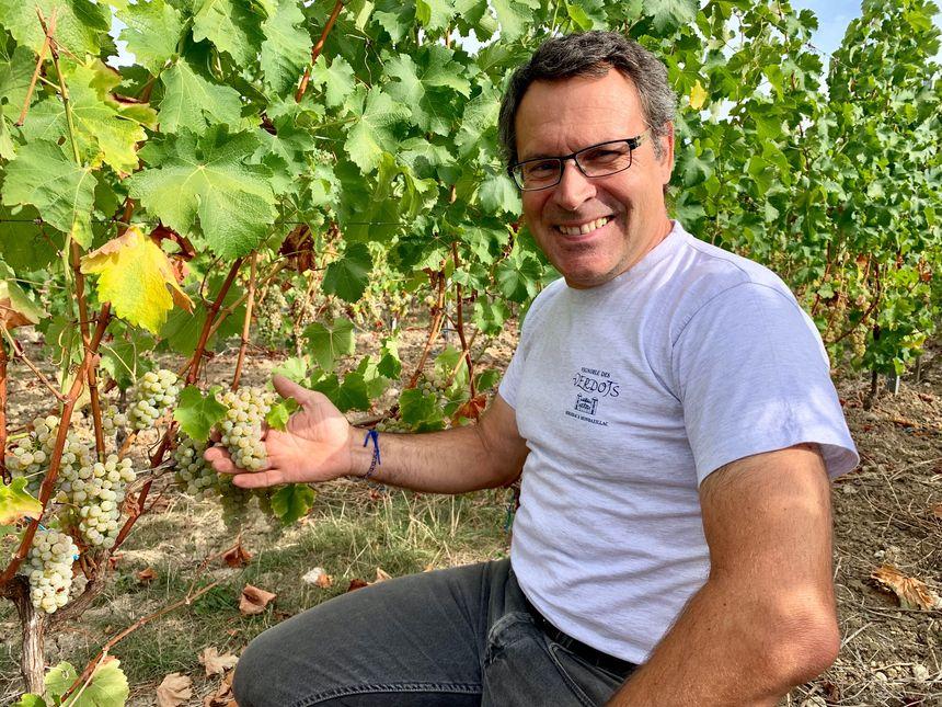Sur ses 45 hectares de vignoble, David Fourtout produit 250 000 bouteilles dont un tiers de vin blanc sec