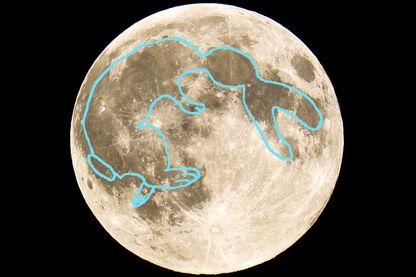Sur la photo, on peut voir le pilon et le récipient avec lesquels le lapin de la lune pile l'élixir d'immortalité