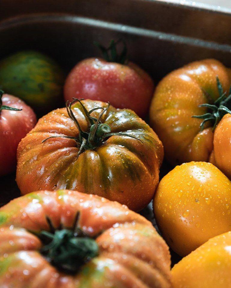 Tomates du jardin de la Maison Aribert