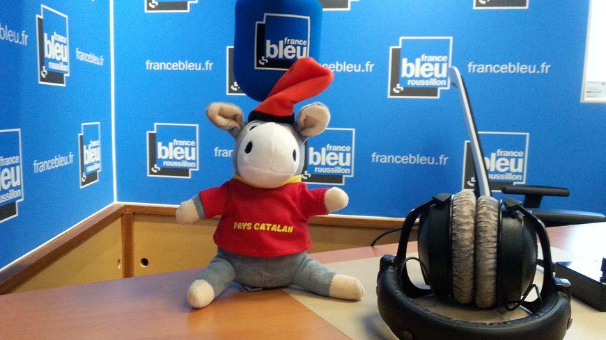 Frigoulette à France Bleu Roussillon