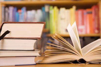 Ouverture d'une nouvelle sélection de livres chez le Masque et la Plume