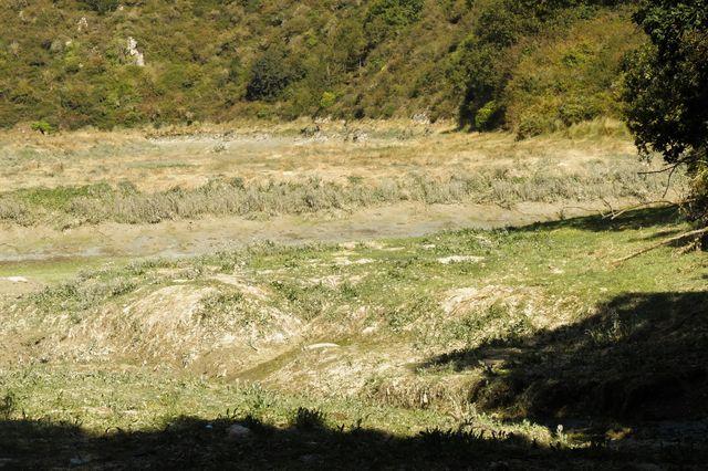 Vasière, estuaire du Gouessant.