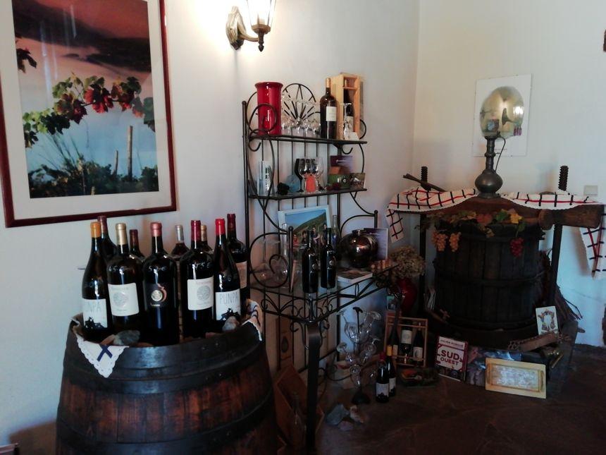 Salle de dégustation du Domaine Arretxea à Irouléguy