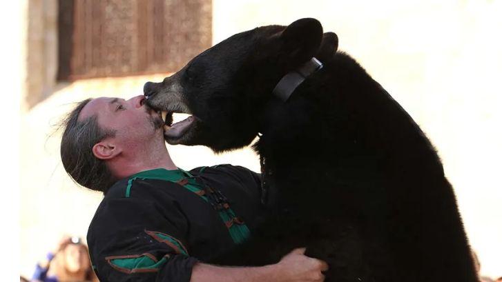 Le spectacle de Frédéric Chesneau, dresseur de l'ours Valentin, est prévu cette année aux Fêtes du Roi de l'Oiseau au Puy-en-Velay