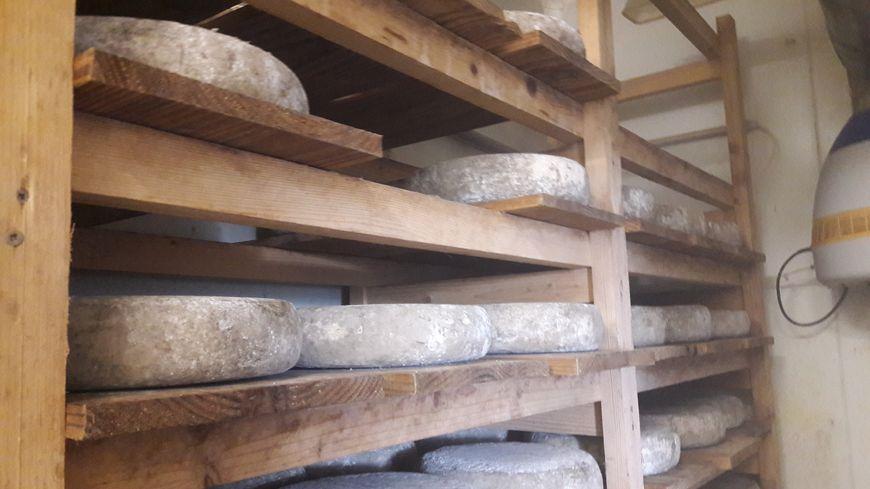 Cave d'affinage de la fromagerie La Vacherie de Rivet à Tonnac