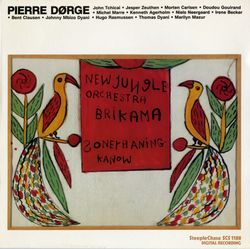 Nuages - PIERRE DORGE & NEW JUNGLE ORCHESTRA