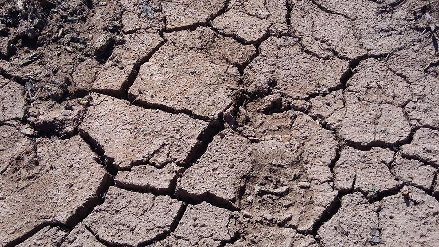 La sécheresse a frappé ces communes en 2018