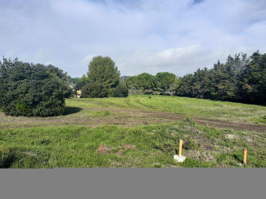 """L""""'endroit où sera créé le futur cimetière de Grammont"""