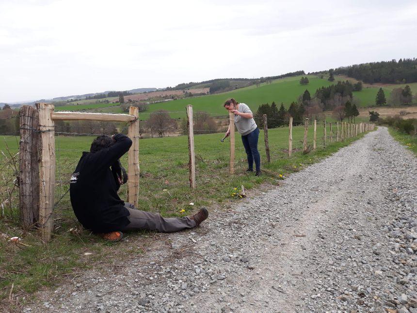 Le photographe en pleine action