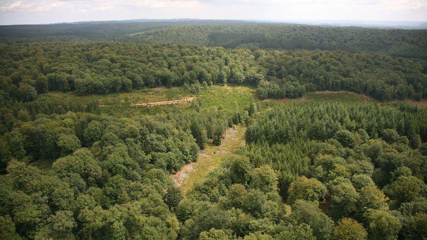 Un paysage des Ardennes