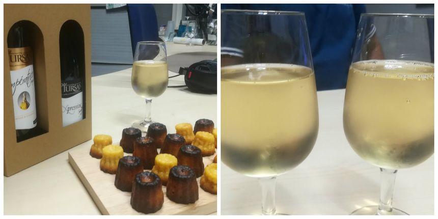 Le bourret et quelques cuvées des vins du Tursan