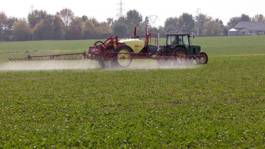 Les épendages de pesticides interdits à Ramonville.