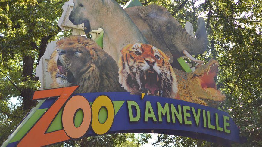 Le zoo d'Amnéville devrait poursuivre son plan d'apurement avec plus de sérénité.