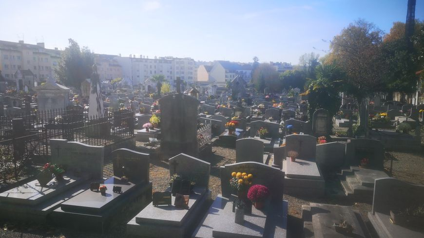 Le cimetière urbain, le plus grand de Pau, est une cible idéale pour les moustiques.