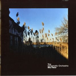 "Pochette de l'album ""Ma fleur"" par The Cinematic Orchestra"