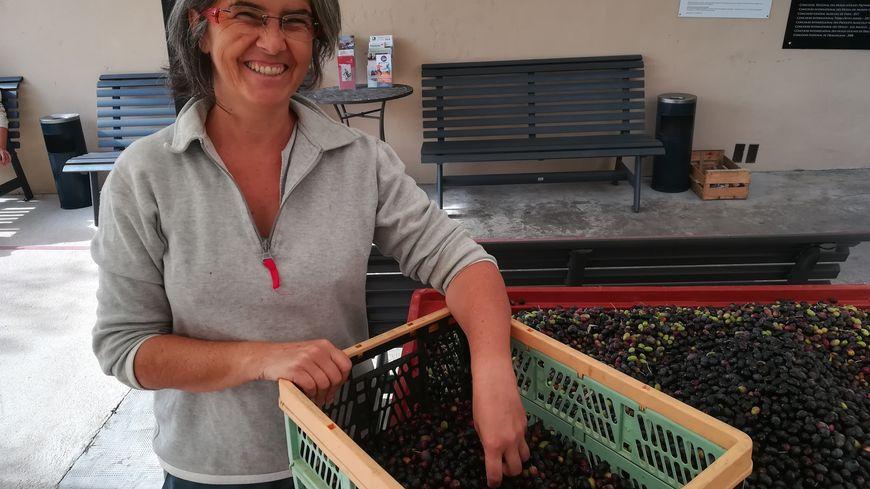 Annie et ses 7,5 kilos d'olives récoltées sur son terrain de La Farlède,