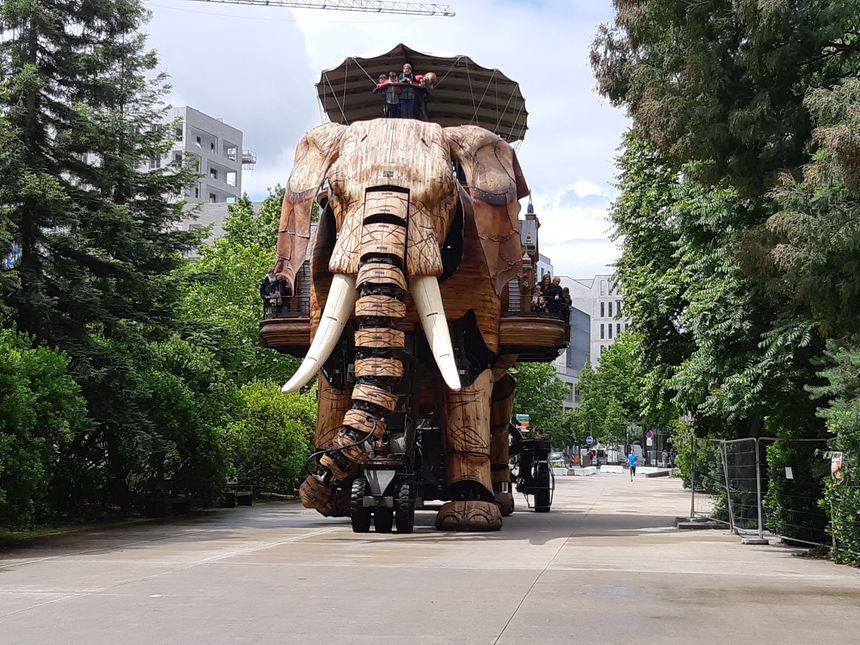 A Nantes, l'Eléphant de la compagnie La Machine est devenu une attraction touristique majeure.