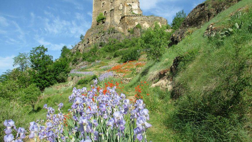 Le château de Léotoing et les terrasses (Pailhats)