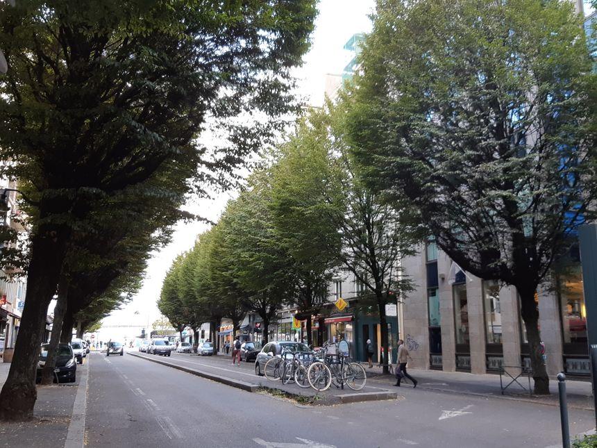 L'avenue Janvier actuellement