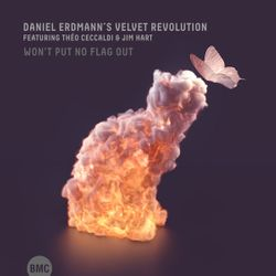 Won't put no flag out - DANIEL ERDMANN'S VELVET REVOLUTION