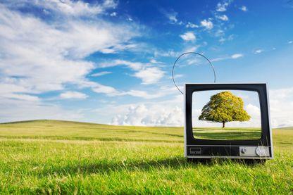 L'écologie, longtemps mal aimée des médias