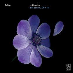 Sonate en trio n°3 en Si bémol Maj ZWV 181 n°3 : 1. Adagio - pour 2 hautbois violon basson et basse continue - ALFREDO BERMARDINI
