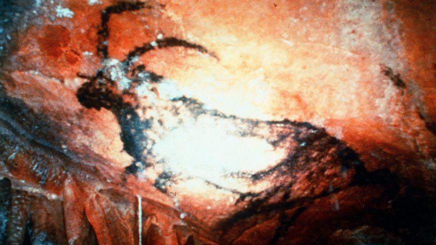 La grotte Cosquer date du paléolithique.
