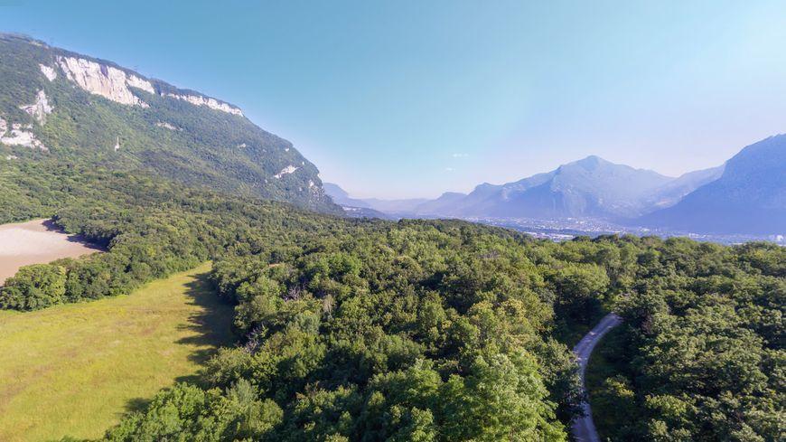 Le bois des Vouillants sur les contreforts du Vercors au dessus de Grenoble
