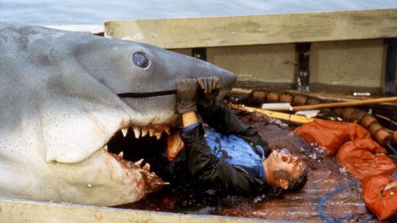 Scène du film Les dents de la mer / Film d'horreur de 1975 - Classique info du 31/10/2019