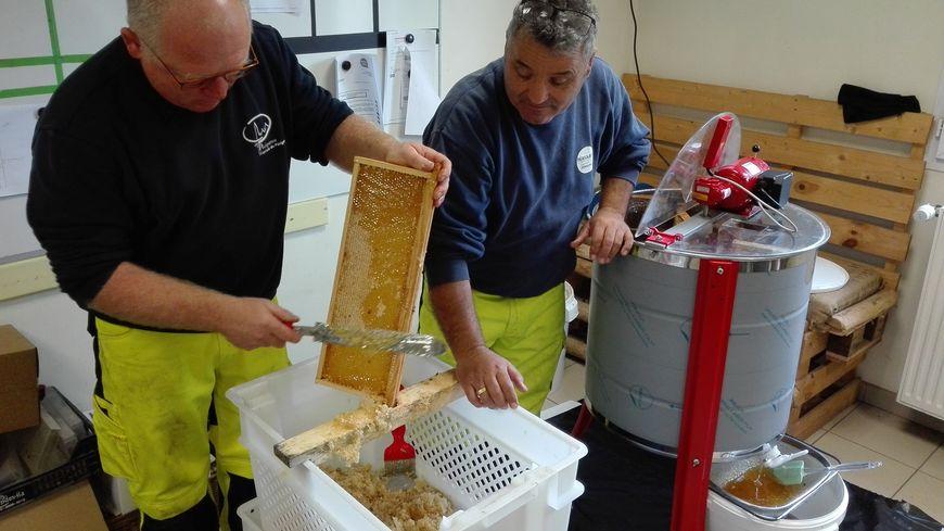 David Dybich gratte un cadre de hausse assisté de Carlos, un apprenti apiculteur