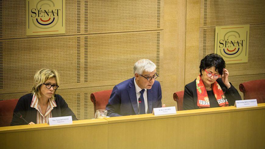 Au centre : Hervé Maurey, le président de la commission d'enquête sénatoriale
