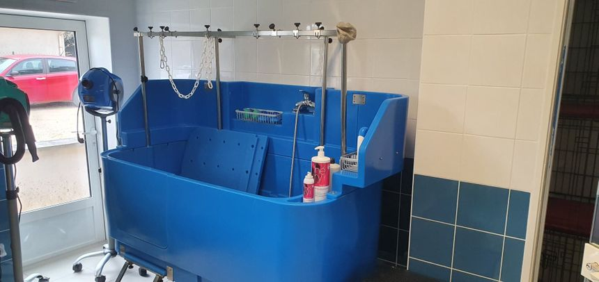 Les clients peuvent venir toiletter leurs animaux. Pour un petit chien, c'est 10 euros, shampoing et services inclus.