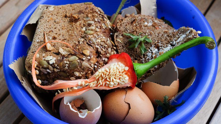 Pour faire du bon compost il faut favoriser les déchets de nos cuisines : épluchures, coquilles d'oeufs, filtres à café ou sachets de thé! Mais attention : pas de restes de viandes ou de fromages.