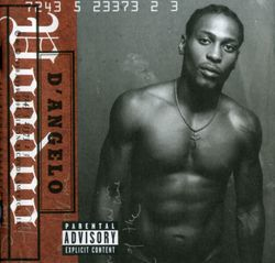 Chicken grease - D'ANGELO