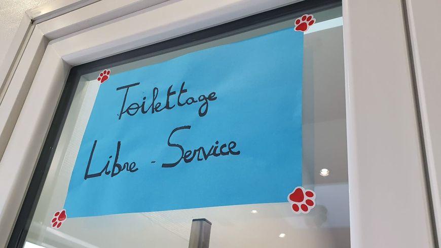 Parmi les services proposés : toilettage en libre service et ostéopathe pour animaux