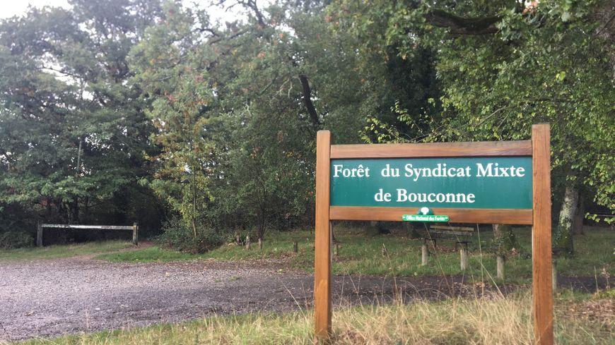 Le corps sans vie d'un homme a été retrouvé par un promeneur, ce mercredi, en lisière de la forêt de Bouconne, à l'ouest de Toulouse.